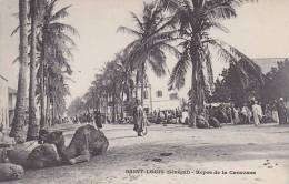 Senegal Saint Louis Repos De La Caravane - Senegal
