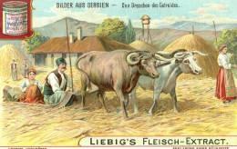Liebig´s Fleisch - Extract.....Bilder Aus Serbien - Liebig