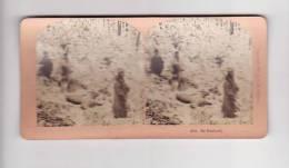 Photos Stéréoscopique  MY BOYHOOD (chasse Dans La Neige) (photo Kilburn Littleton) - Visionneuses Stéréoscopiques