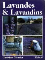 Nature : Lavandes Et Lavandins Par Christiane Meunier - Provence - Alpes-du-Sud