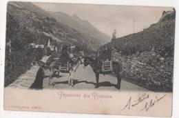 Paysannes Des  Pyrénées - âne - France