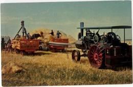 "Chrome Postcard, ""End Of An Era"" A Busy Saskatchewan Threshing Scene, Saskatchewan (ref.#-189wc) - Cultures"