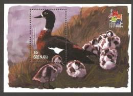 Grenada. Yv. Bf. 580  /  Aves - Birds - Oiseaux - Ducks - Patos