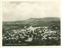 Bethlehem, Champ Des Pasteurs, Mini Photo Snap Card [11726] - Reproductions