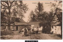 11365g HERENT - NEERPELT - 1929 - Bétail - Neerpelt