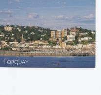 Torquay Devon  4 Cards   # 18 # - Postcards