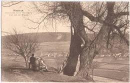 Diekirch Vieux Saule Sur Le Herrenberg Avec Vue Sur Glisdorf Animee 19.8.1926 Gelaufen - Diekirch