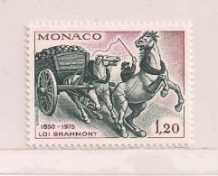 MONACO  ( D14 - 1683  )   1975   N° YVERT ET TELLIER  N° 1033     N** - Monaco