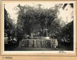 Photo -ref 153- Saint Junien -st Junien -haute Vienne -ostensions De St Junien -photo Bon Etat - - Lieux