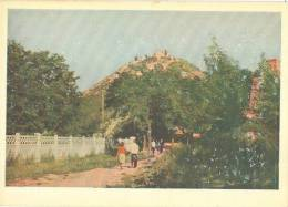 Ukraine, Lvov, High Castle Hill, 1962 Unused Postcard [11748] - Ukraine
