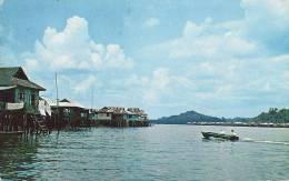 Houses On Stilts - Kampong People - Brunei