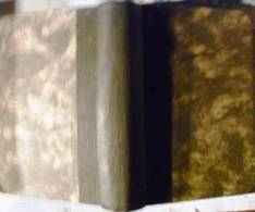 """Les Grands Jours D'Auvergne .Paul Duplessis - Sér.3& 4 - """"Diane D'Erlanges"""" 1860 - Alexandre Cadot Imp. E.Dépée [rare] - Books, Magazines, Comics"""