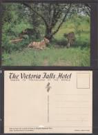 RHODESIA (ZIMBABWE):  Lions Wankie National Park, VICTORIA FALLS HOTEL Card - Zimbabwe