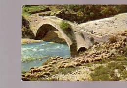 Alpes Des Provence La Transhumance Moutons Troupeau - Elevage