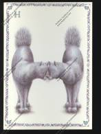 CHAT : Série Alphabet : Lettre H : Cat Katz Gatto  ( Editions Gendre Illustration Armelle Boy Chats ) - Katten