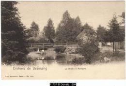11737g PASSERELLE - La Wimbe - Revogne - Beauraing