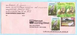 Jamaika Jamaica Jamaique Brief Cover Lettre 852 932 937 Vögel Hunde Tiere - Weihnachten Park  (23002) - Jamaica (1962-...)