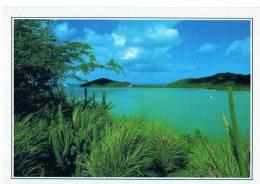 CPM     GRENADINES        ILE DU VENT        ILE DE MUSTIQUE - Grenada