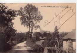 Sceaux-d'Anjou..belle Vue Du Village..l'Eglise - Other Municipalities
