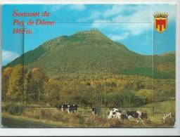 Carte Semi-moderne à Système , Sommet Du Puy De Dôme France, Avec Dépliant De 10 Vues Dont Un Delta Plane , - Mechanical