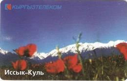 *KIRGHIZISTAN* - Scheda Usata - Kirgizië