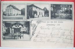 Gruss Aus  Loewenberg Multi Vues Den Drei Linden Hugo Grande Voyagé 1904 Timbre Cachet Plein Lowenberg Schlessien + Coln - Löwenberg
