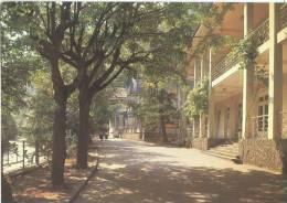 Georgia, Borjomi, 1984 Unused Postcard [11771] - Georgia