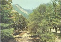 Georgia, Borjomi, 1984 Unused Postcard [11772] - Georgia