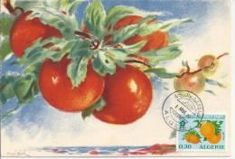 Carte Maximum, Orange - Algeria (1962-...)