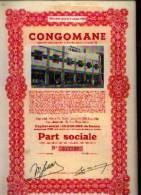 """""""CONGOMANE"""" - Part Sociale - Afrique"""