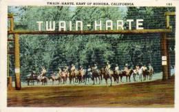 Twain-Harte - East Of Sonora   (48466) - Etats-Unis