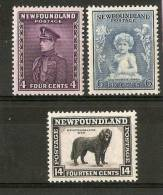 NEWFOUNDLAND 1932 4c, 6c And 14c SG 212, 214, 216 PERF 13½ LIGHTLY MOUNTED MINT Cat £19.50 - 1908-1947