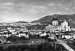 """Bellissima Cartolina  Anni 50  """"Panorama Di S.Maria Degli Angeli E Di Assisi """""""" - Perugia"""