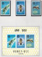 Honey - Bee, Thème Abeilles - Abeilles