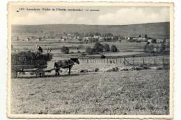 LAVACHERIE-LA MOISSON-ANIMATION-EDIT.MME BRICOTTE-MICHEL-ENVOYEE-VOIR 2 SCANS - Sainte-Ode