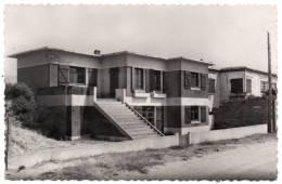Cpsm 85 - Notre-Dame De Monts - Le Petit Quinquin (Colonie De Vacances) - (9x14 Cm) - Autres Communes