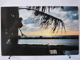 Carte Très Peu Courante - Etats Unis - Florida - Greyhound Post House On The Over-seas Highway -  Scan Recto-verso - Etats-Unis
