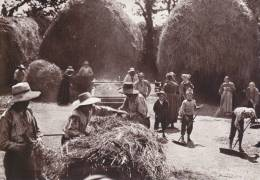 Bretagne D´Hier - Breiz Gwechall - Battage En Pays Rouzik (1930) - - Bretagne