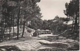 CAP-FERRET, Le Petit Train Forestier, JJ Millet Constructeur - 28 Renaud & Buzaud - France