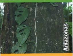 Lote PEP325, Colombia, Postal, Postcard, Amazonas, Amazon, Arbol, Tree - Colombia