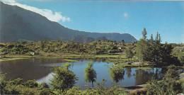 Ile De La Réunion,ile Française,outre Mer,archipel  Mascareignes,océan Indien,CILAOS,ETANG DES TROIS MARES,belle Vue - La Réunion