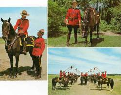 3 CP The Royal Canadian Mounted Police  (48534) - Alberta