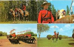 4 CP The Royal Canadian Mounted Police  (48535) - Alberta