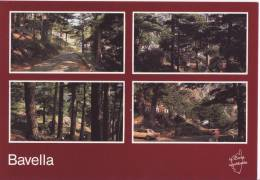 CORSE - Quenza ( Bavella) * Belle Carte NEUVE * -  Ed Corse Inoubliable N°23.41.70 - Francia