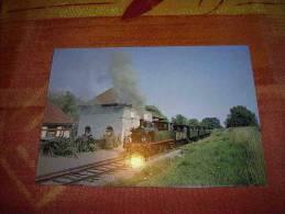 Lotrain - CPM 68 - Le Petit Train De La Vallée De Doller Cernay Sentheim Locomotive Meuse 51 En Gare D' Aspach - Frankreich
