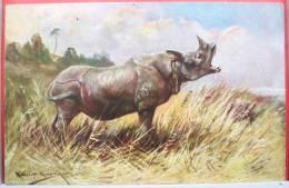 LITHO CHROMO Illustrateur Muller MUELLER WSSB N° 6961 IMPORT Rhinoceros Afrique TOP - Mueller, August - Munich