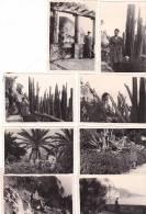 21014- 19 Photos Originales  6x9cm Femme Sans Doute Belge Belgique Vers 1950 -ici Sur La Cote D´azur ? - Personnes Anonymes