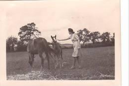 21032- 4 Photos Originales  6x9cm Femme Sans Doute Belge Belgique Vers 1950 -chevaux