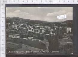 V18167 ARCIDOSSO PANORAMA - Grosseto