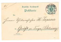 POSTCARD ENTIER De SCHLES WIG Du 4 6 1891 à Destination De ? - Allemagne